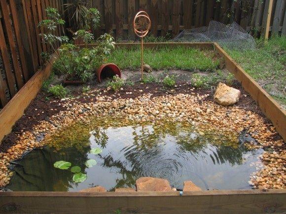 Outdoor Aquatic Turtle Habitat | Uploaded to Pinterest
