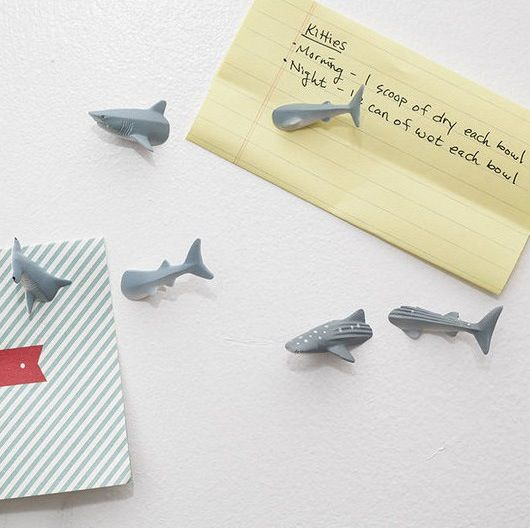 Shark Week: Gifts & Goodies for Shark Week Fans | Apartment Therapy
