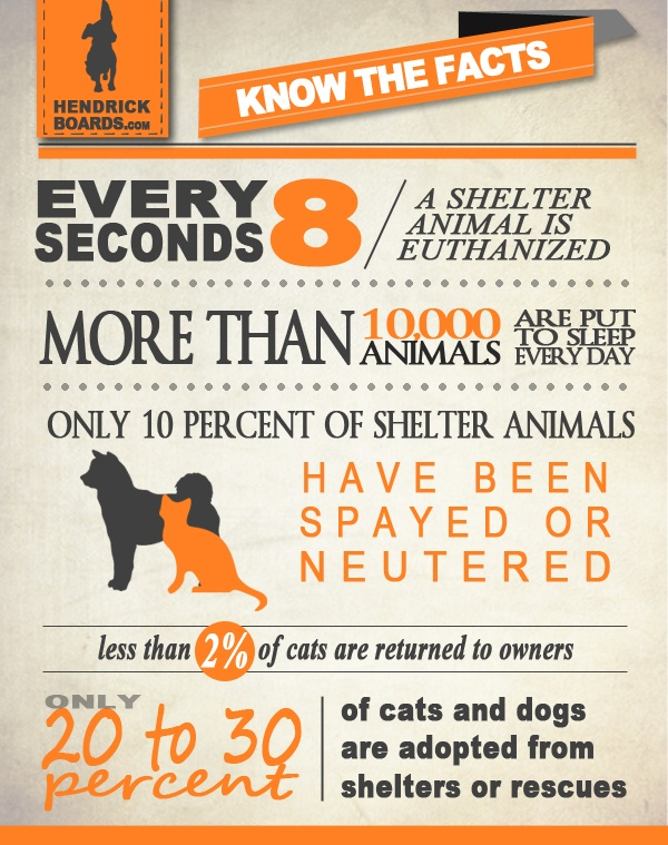 Every 8 seconds, a shelter animal is euthanized...  Only 10% of shelter animals are spayed or neutered...  10,000 animals are killed every day...    This is why we formed Hendrick Boards...to make a difference...to see a world without the need for animal euthanasia. Join our cause one shirt, one skateboard at a time. www.hendrickboards.com