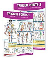 Trigger Point Therapy Chart/Poster Set; Acupressure Charts - Myofascial Trigger Points - Massage Therapy Charts - Muscle Pain Relief Posters - ... Neuromuscular Therapy - Physiotherapy Charts