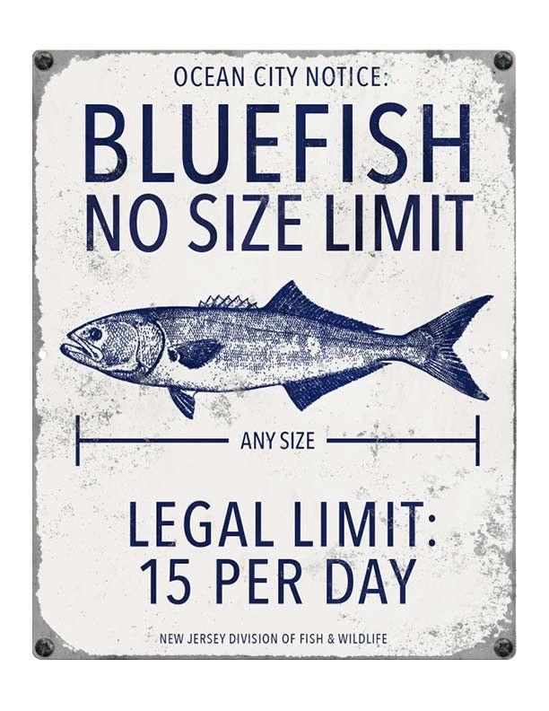 96 best graphics 4 guys images on pinterest vinyl for New jersey fishing license