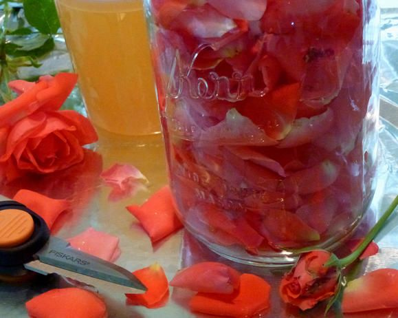 Herbal Infused Honeys to Make Yourself / Canning & Freezing | Fiskars