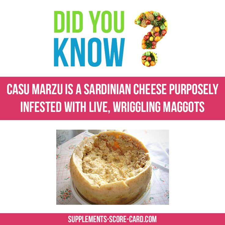 Casu Marzu is a Sardininian Cheese purposely infested with live, wriggling…