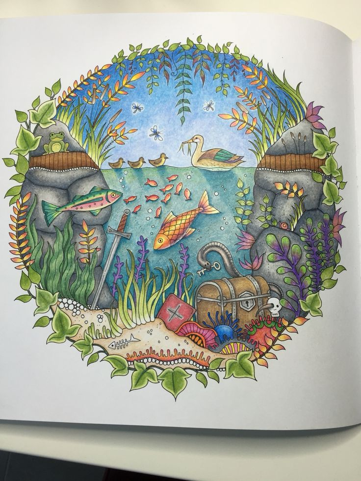 Colored By Marnie Nunes Johanna Basford Enchanted Forest Duck Pond I