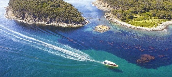 Top 10 Things to do Hobart: #3 Travel to Bruny Island with Bruny Island Cruises