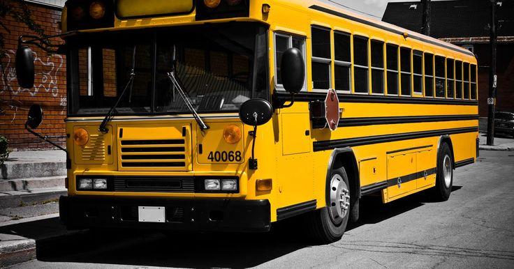 ¿Cuáles son los beneficios de manejar un autobús escolar?. Los conductores de autobuses escolares deben tener una licencia de conducir comercial con un endoso P (autobús de pasajeros) y S (autobús escolar) para transportar legalmente estudiantes. La mayor parte del trabajo de los conductores del autobuses escolares es a tiempo parcial; dichos conductores transportan a los estudiantes de sus casas a la ...