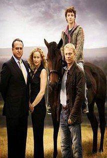 Irlande. Un jeune cheval du nom de Rough Diamond est conduit dans la propriété…