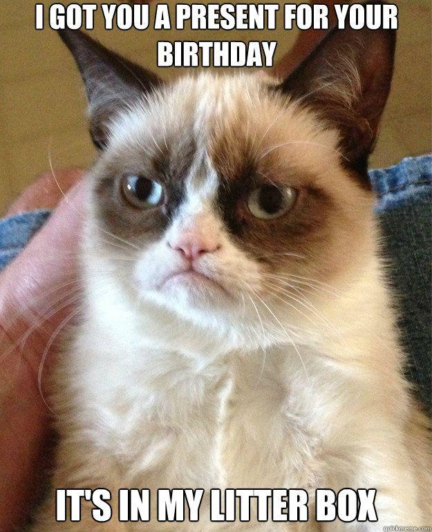 #GrumpyCat #Meme @Melissa Malone that is Forrest!