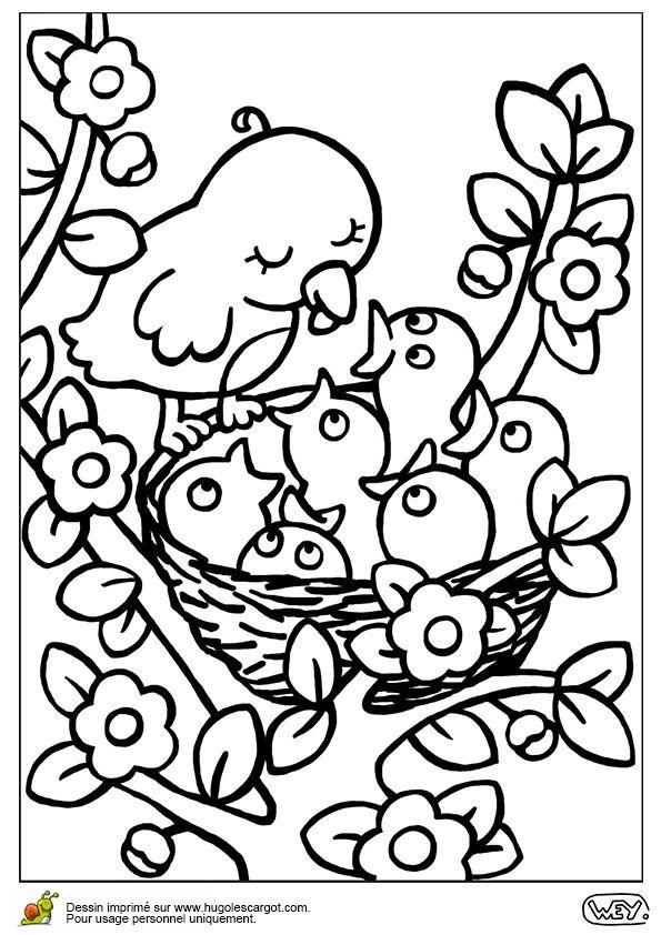 Oiseaux Au Nid, page 9 sur 12 sur HugoLescargot.com