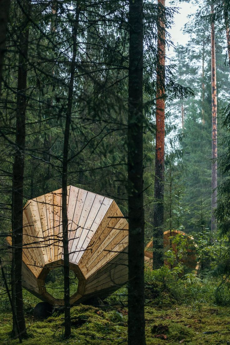 Giant Megaphones In Estonia Let You Listen To Sounds Of The Forest