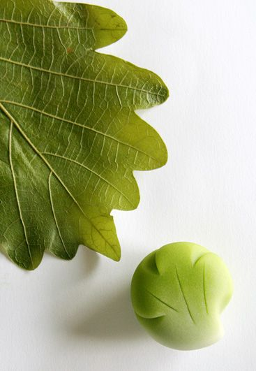 柏の葉の上生菓子 On Kashiwanoha Namagashi