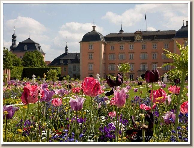 The beautiful and extensive gardens at Schloss Schwetzingen in Germany