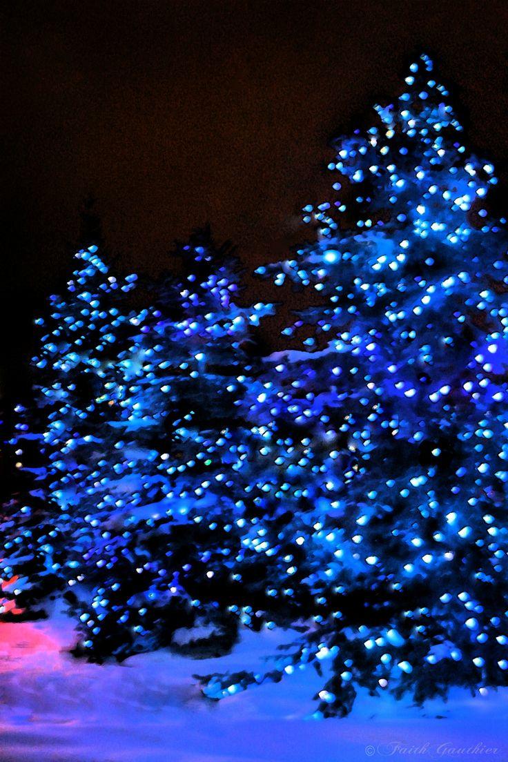 Christmas tree blue lights imgkid the image