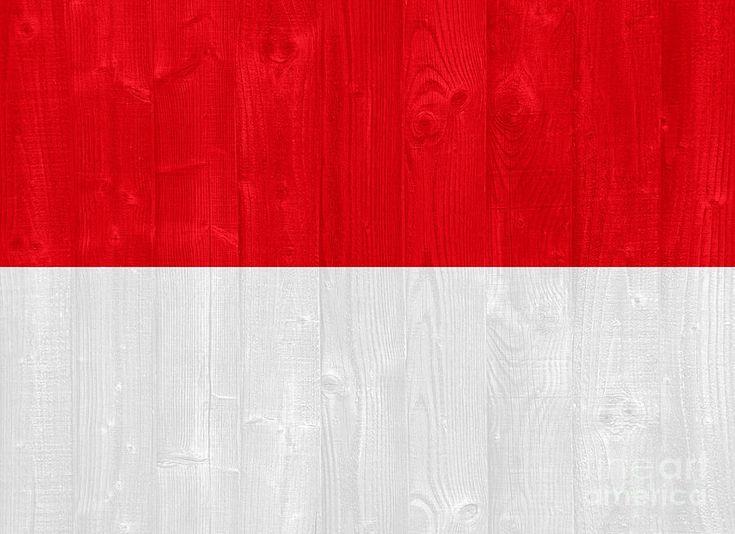 Indonesia Flag Photograph