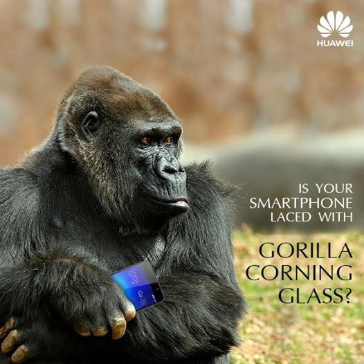 """#Honor6 features a third generation Corning #GorillaGlass screen which makes the screen scratch resistant. http://bit.do/Honor6 #Huaweiindia #Huaweidevice #Flipkart"""