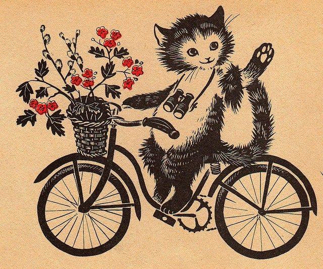 Картинки велосипеда боком данной статье