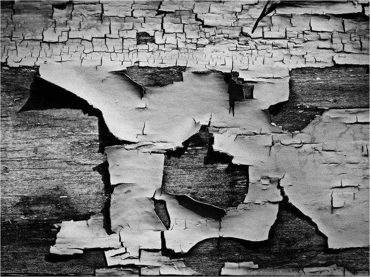 In this photograph Aaron Siskind captures the decay of a old bit of wood were the paint has peeled away from the wooden surface to exposes the texture of the wood, This makes the line strong.