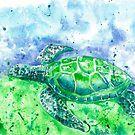 Sea Turtle by Corinne Matus