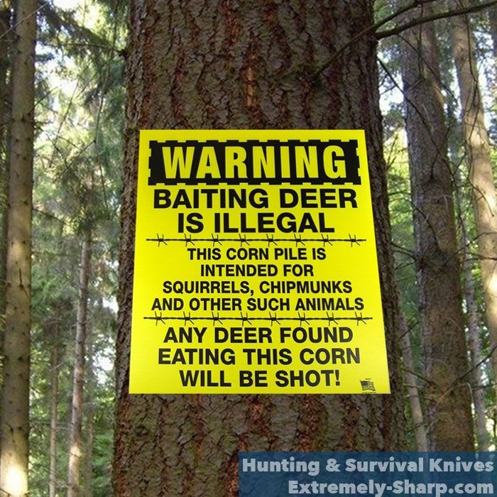 Deer Humor   Hunting knives   Baiting is Illegal, any deer eating this corn will be shot    www.extremely-sharp.com/