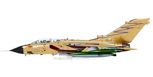 Tornado ECR, 155º Gruppo 'Pantere Nere', Italian Air Force