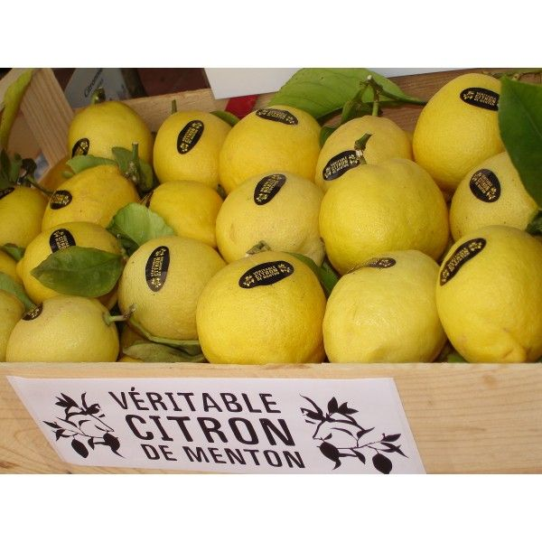 Citrons de menton from France. The most sought after lemon in the world!