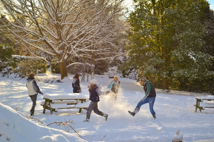 Snowy fun      Taken at the Botanic Gardens in Durham, this photograph depicts a group of students enjoying the snowy scene, characteristic of the season's greetings. Appreciating green spaces with friends is extremely important, especially when you share the same interests in the fascinations of the outdoor world.            Added by Waheed Arshad on 31 August 2012          Taken at Durham University Botanic Gardens
