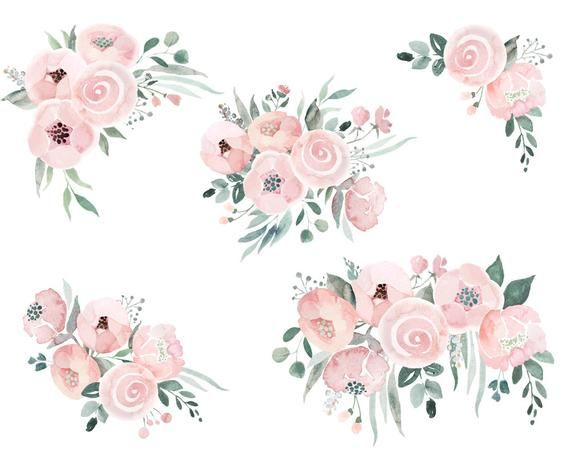 Dusty Pink Roses Clipart Watercolor Roses Roses Bouquets Etsy