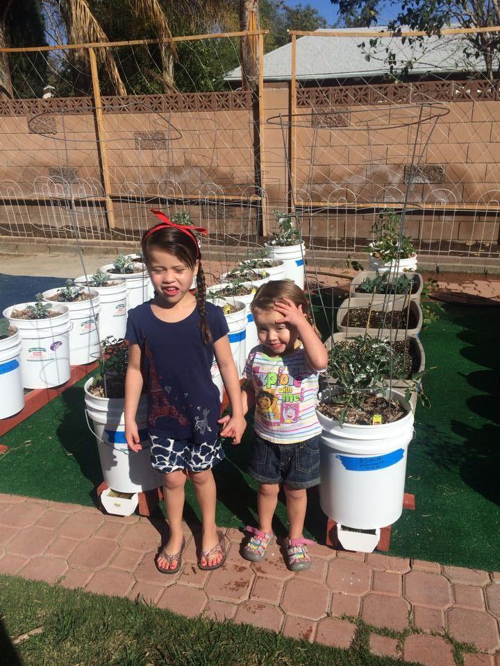 23 Best Images About Gardening Rain Gutter Grow System