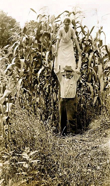 Woman on a farmer's shoulder emphasizes a corn crop's height in Minnesota, 1916. Geographic