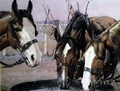 Draught Horses Drinking - Allan Bernaldo - Australian