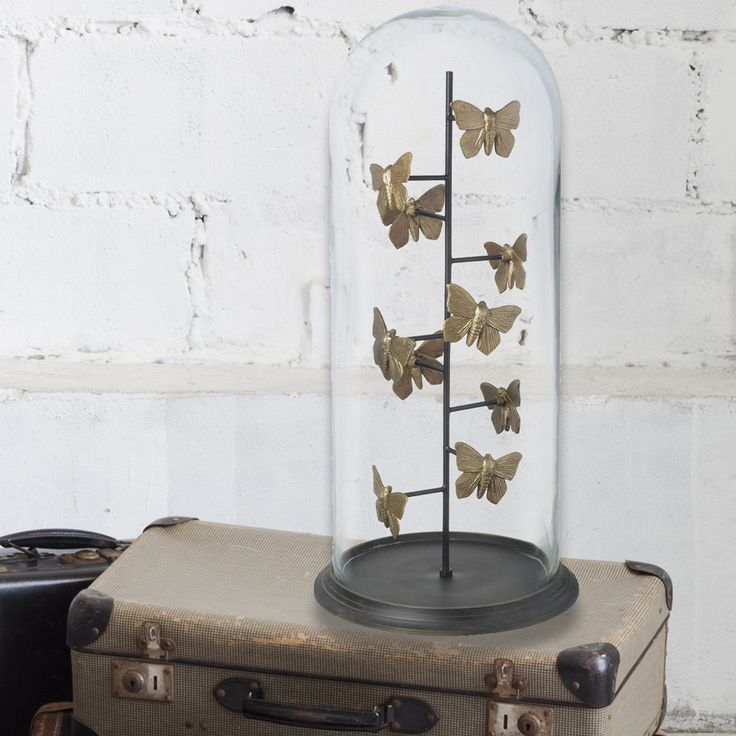 #butterflies #dome #gilded #vintage #victorian