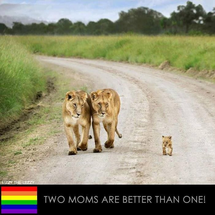 Lesbian Lion 105