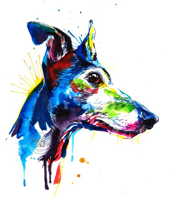 Colorful Greyhound Art Print by Weekday Best on Etsy.
