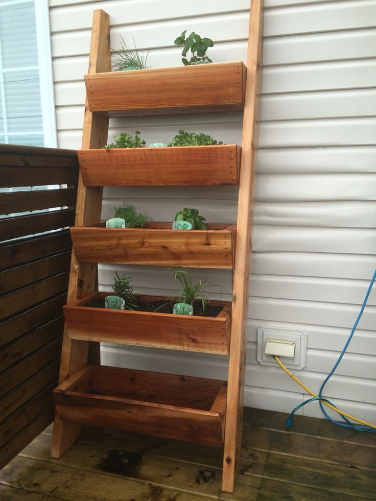 Fresh herbs... 2x6 cedar, that's it
