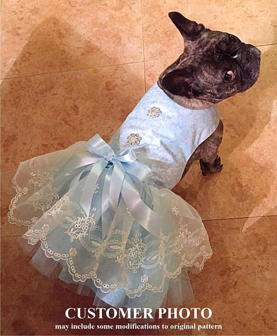 French Bulldog in a Tutu Dog Dress, Pattern #1701 Small & Medium Dog Clothes