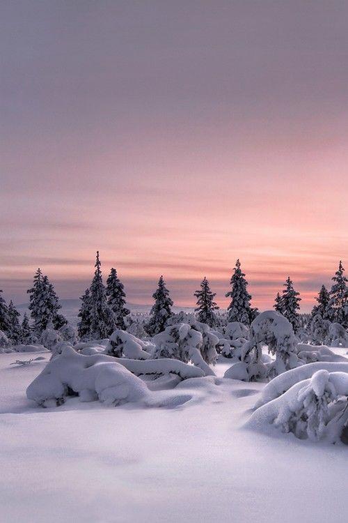 sundxwn: Lappland - Winterwonderland by Christian Schweiger