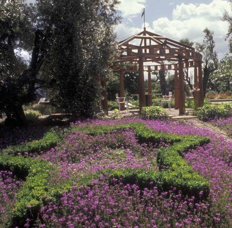 12 best CAMPANIA, i Parchi e Giardini più Belli images on - gardine für küche