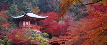 Viaje de novios a Japon y Bali. Disfruta de una luna de miel inolvidable en #Japón y combinalo con #Bali. Tenemos #ofertas únicas para #viajesdenovios ya que somos especialistas en #lunasdemiel Nos encantan las #bodas y las #novias