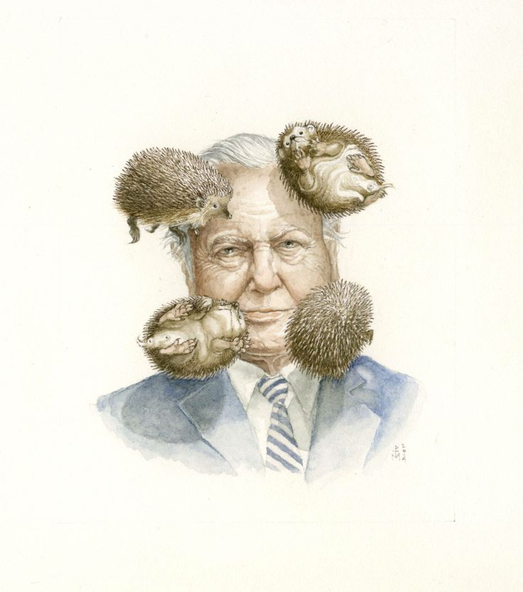 Today's sneak preview for Everyone I've Never Known comes to you from Phantoms's member Paul Morstad. It is a Miniature, water colour portrait of Sir David Attenborough and is 4 inches x 5 inches. The Exhibition is this Friday, April 25th, and goes from Noon-9-pm, with continuing shenanigans in the hotel lounge after. #PhantomsNeverKnown