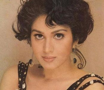Meenakshi Sheshadri will make her comeback with film Ghayal Once Again
