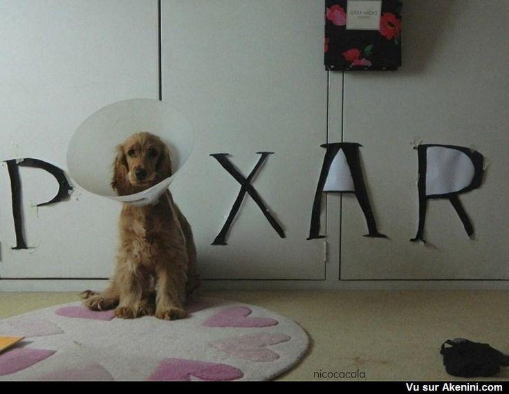 Le chien lampe Pixar The dog Pixar lamp