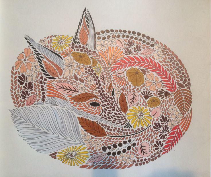 Animal Kingdom Colouring Book Bird 120 Best Milliemarotta Images On Pinterest
