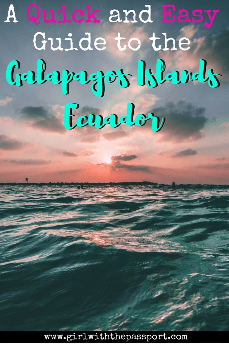 Trying to #plan a #cheap and #easy #vacation to the #galapagos islands in #ecuador? Then check out this #budget guide, which will help you create the best Galapagos Islands #itinerary ever. This way, you can tick a another #site off of your ever growing #bucketlist.