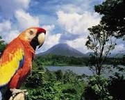 I fell in love with Costa Rica's beauty.