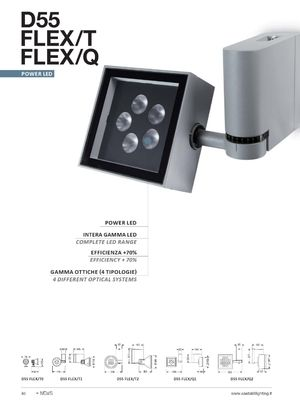Architectural Exterior LED Flood - Projector Lighting _Castaldi - D55 FLEX.jpg