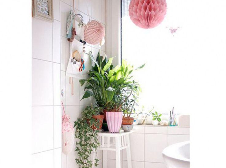 99 best images about plantes pour salle de bain on - Plantes pour salle de bain ...