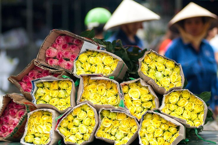 Ready to sell by Trinh Dao van - Photo 70243319 - 500px