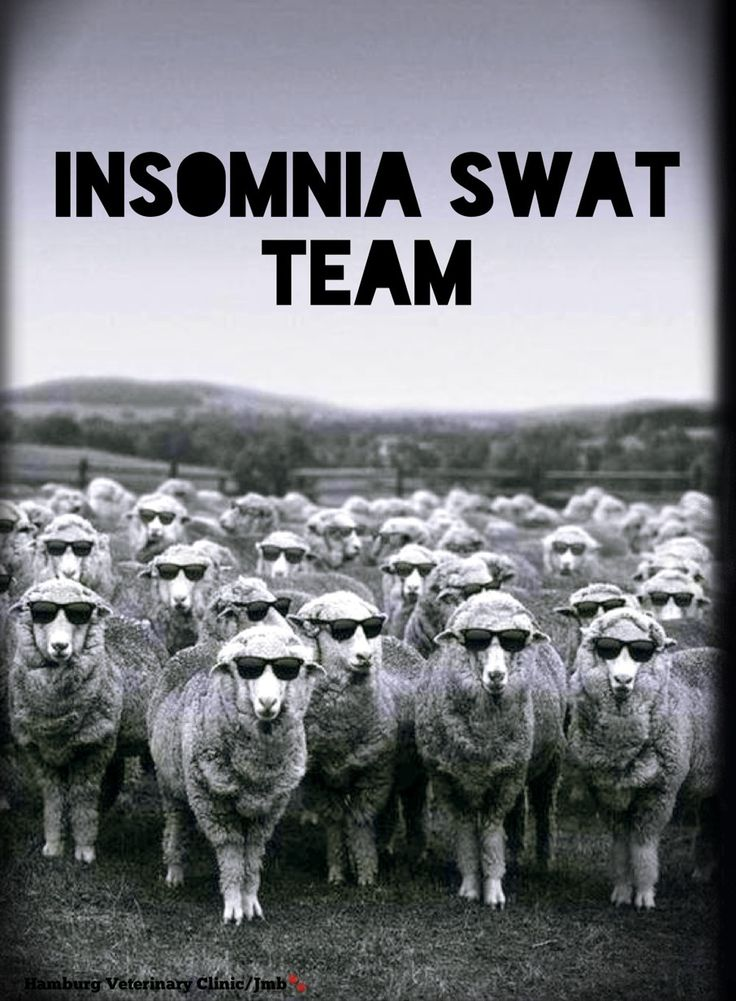 Insomnia | Can't sleep | So tired | Close your eyes | Need to sleep | Counting sheep | Time for bed | Animal humor | Long day | Longer night! Having a bit of Insomnia? Hope you won't need this team tonight! Here's to sleeping eventually!! Good Night, friends.