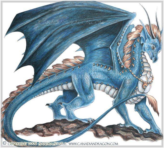 "fantasy dragons art gallery | Elshara the Dragon,"" Blue Dragon Character Illustration, Color Pencil ..."