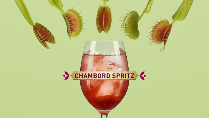 To make a Chambord Spritz, pour Chambord (1½ oz), dry white wine (4 oz) onto a glass filled with ice and top up with soda water. Et voila!